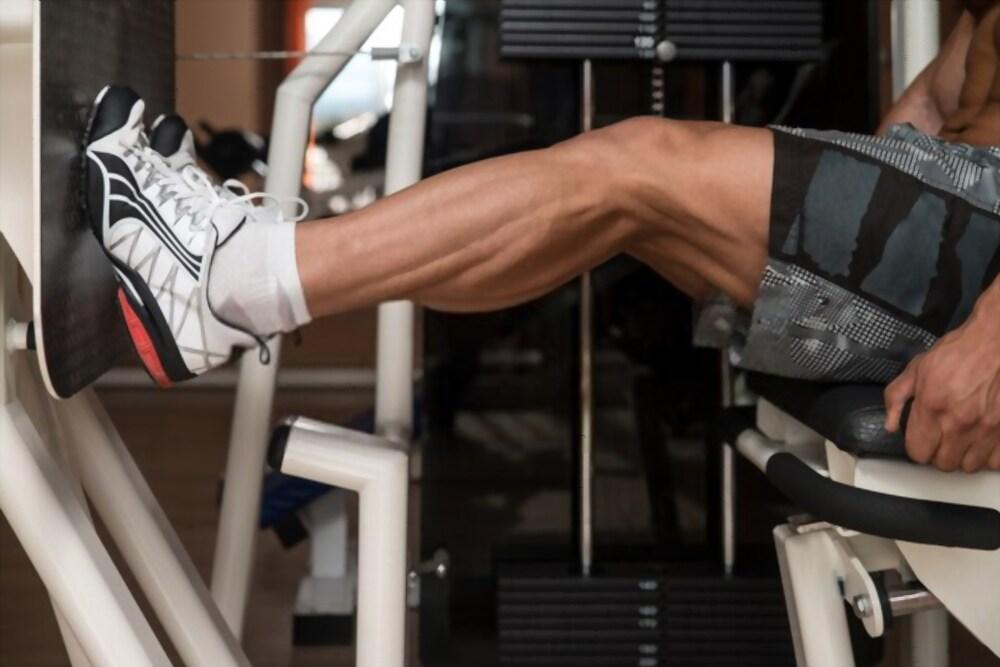 Best 23 Leg Workouts For Men
