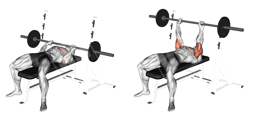 Best Chest Workout For Men